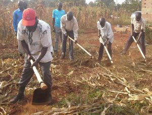 agriculture foundations for farming anglican international development